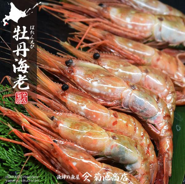 牡丹海老(ぼたんえび)